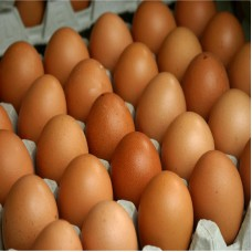 The price of red eggs today
