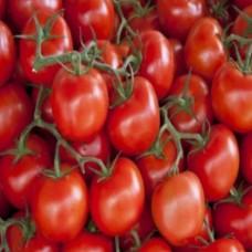 الطماطم المجمدة والفريش